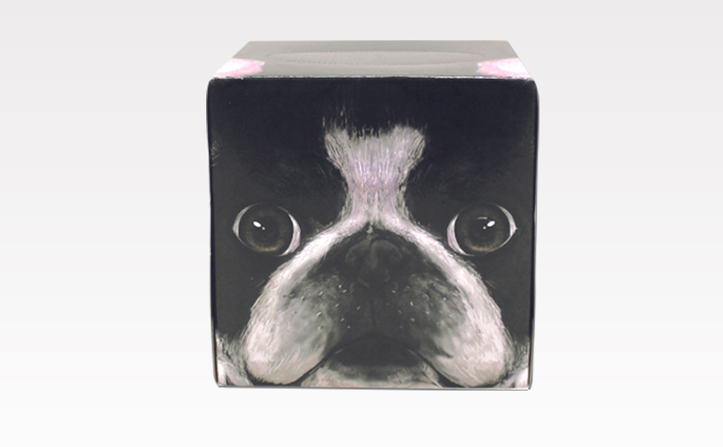 イヌッシュ-フレンチブルドッグ(茶)