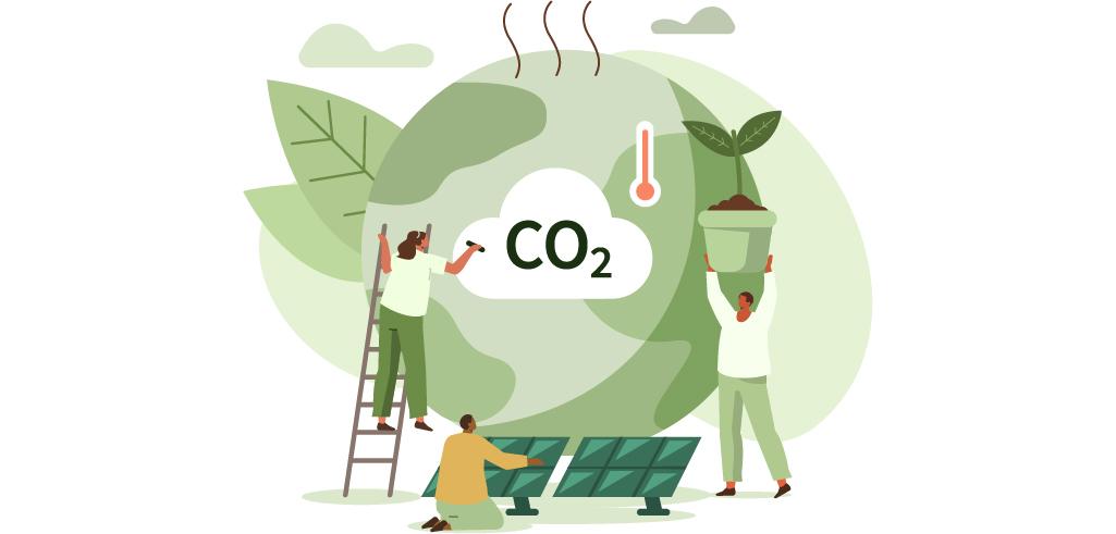 大昭和紙工産業の森を育み、二酸化炭素を抑える活動