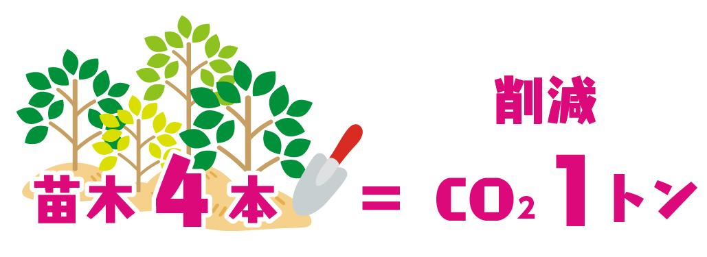 カラマツ1本の植樹で、250kg相当の二酸化炭素排出量をオフセット
